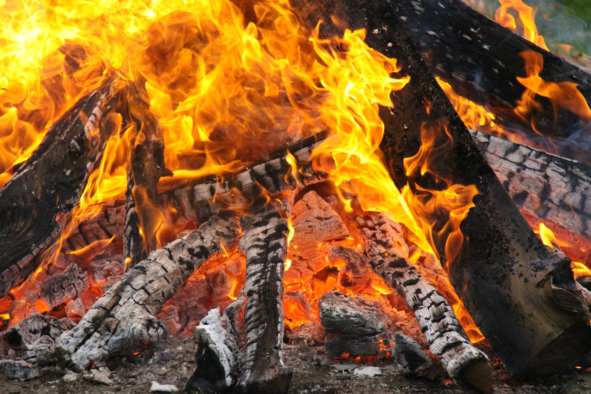 close up photography of burning woods